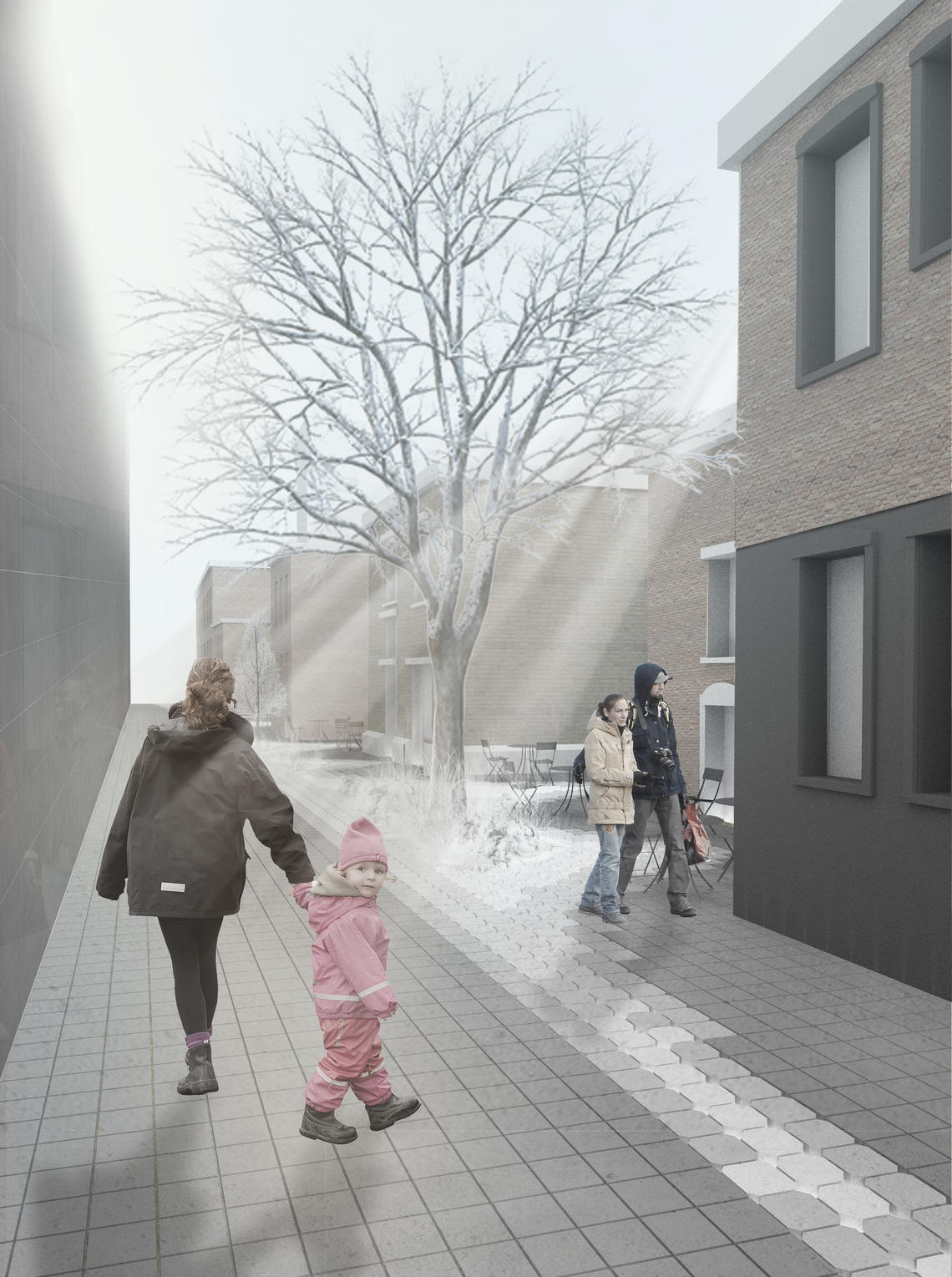 Green Alley Project, 2020 update: winter